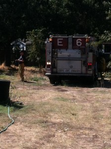 City of Chico truck in back yard