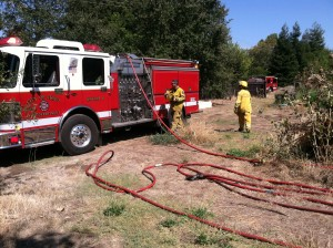 firefighters2_130912