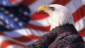 etc guy american flag and eagle2
