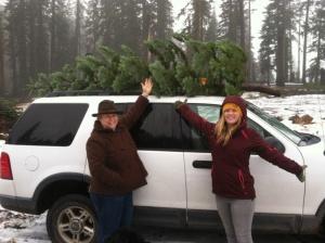 Hun Kate tree on SUV
