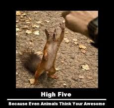 etc guy squirrel high five
