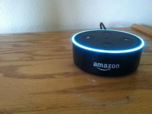 Alexa Amazon etcguy